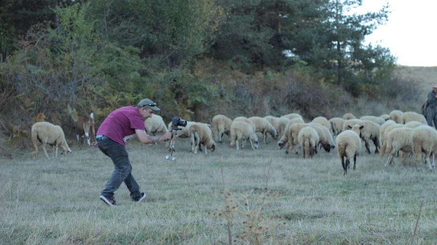 овце, народно, даше мейкинг, стефан николов, да настръхнем, гайда, кавал фолклор, етно бас проект, балканско